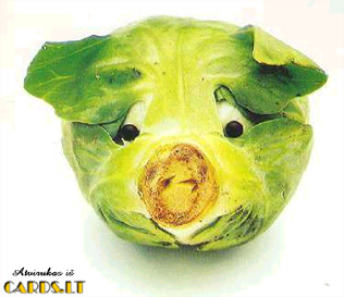 Cabbage instad of head
