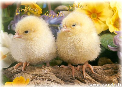 Linksmų šventų Velykų
